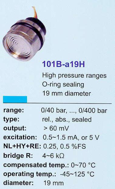 101B-a19H